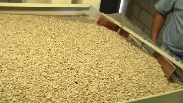 a cafe en granoss